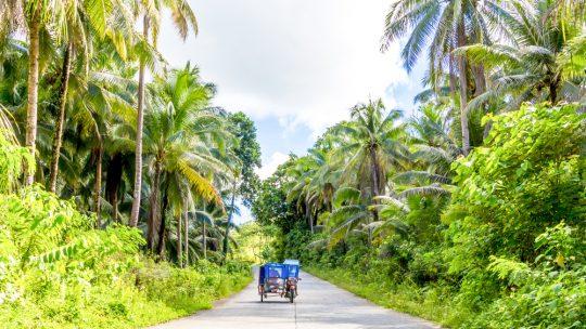L'île de La Réunion : une destination inéluctable